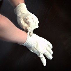 Canvas Gloves